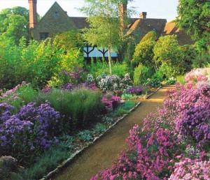 растения английского сада